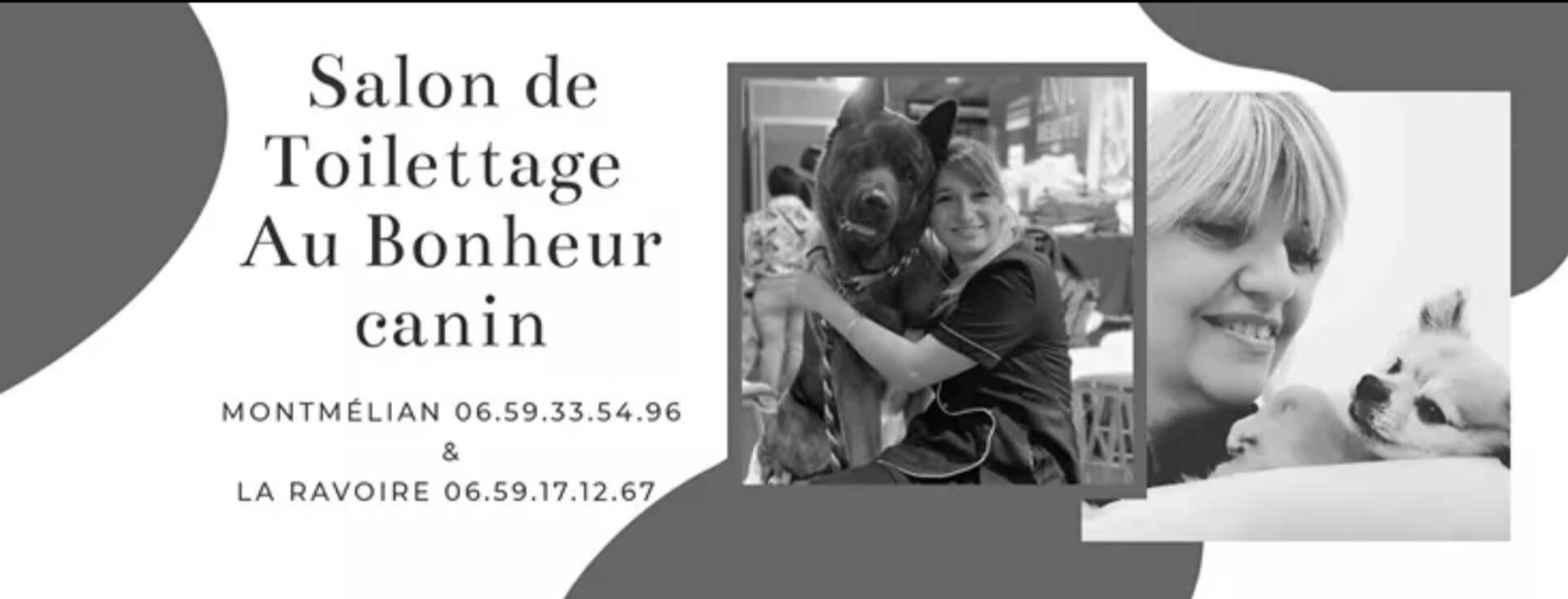 Toilettage chien à Chambéry | Au Bonheur Canin